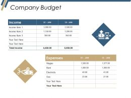 Company Budget Ppt Diagrams