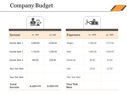 Company Budget Ppt Sample