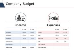 Company Budget Ppt Slides Graphics Download