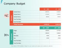 Company Budget Ppt Slides Portfolio