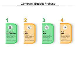 Company Budget Process Ppt Powerpoint Presentation File Pictures Cpb