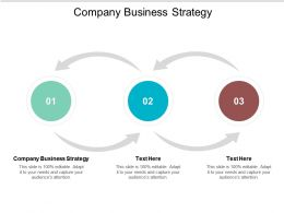 Company Business Strategy Ppt Powerpoint Presentation Slides Format Ideas Cpb