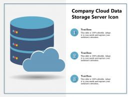 Company Cloud Data Storage Server Icon