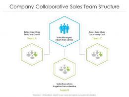 Company Collaborative Sales Team Structure