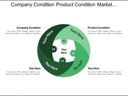 Company Condition Product Condition Market Condition Essential Capabilities