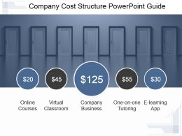 Company Cost Structure Powerpoint Guide