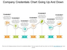 Company Credentials Chart Going Up And Down