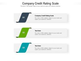 Company Credit Rating Scale Ppt Powerpoint Presentation Professional Example Introduction Cpb