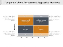 Company Culture Assessment Aggressive Business Strategy Cpb