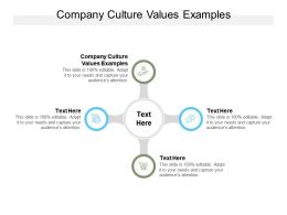 Company Culture Values Examples Ppt Powerpoint Presentation Ideas Graphics Cpb