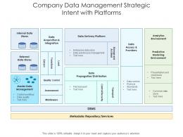 Company Data Management Strategic Intent With Platforms