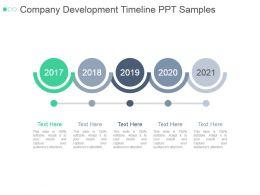 Company Development Timeline Ppt Samples