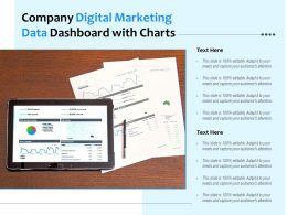 Company Digital Marketing Data Dashboard With Charts
