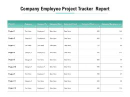 Company Employee Project Tracker Report