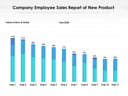 Company Employee Sales Report Of New Product