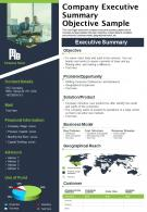Company Executive Summary Objective Sample Presentation Report Infographic PPT PDF Document