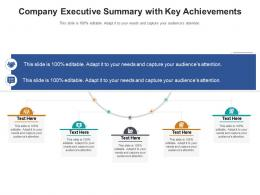 Company Executive Summary With Key Achievements Infographic Template