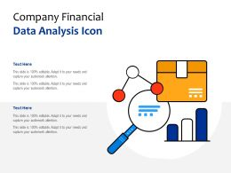 Company Financial Data Analysis Icon