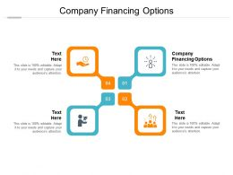 Company Financing Options Ppt Powerpoint Presentation Model Clipart Cpb