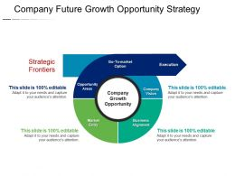Company Future Growth Opportunity Strategy Sample Of PPT