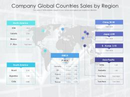 Company Global Countries Sales By Region