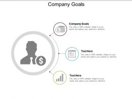 Company Goals Ppt Powerpoint Presentation Gallery Diagrams Cpb
