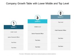 Company Growth Table With Lower Middle And Top Level