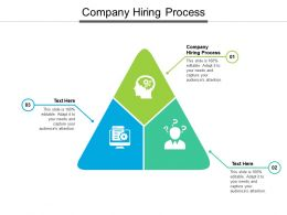 Company Hiring Process Ppt Powerpoint Presentation Show Cpb