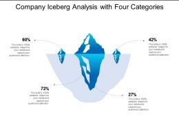 Company Iceberg Analysis With Four Categories