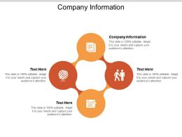 Company Information Ppt Powerpoint Presentation Portfolio Pictures Cpb