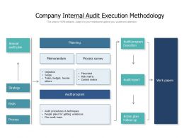 Company Internal Audit Execution Methodology