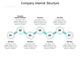 Company Internal Structure Ppt Powerpoint Presentation Ideas Skills