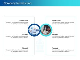 Company Introduction 2019 To 2020 Ppt Powerpoint Presentation Layouts Objects