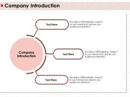 Company Introduction Attention M407 Ppt Powerpoint Presentation Slides Graphic Images