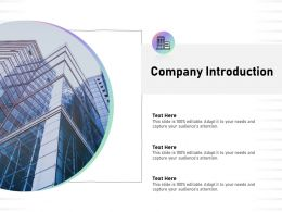 Company Introduction Audiences Attention Capture Ppt Powerpoint Presentation Guide