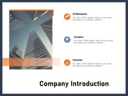 Company Introduction Audiences Attention Ppt Powerpoint Presentation Layouts Diagrams