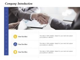 Company Introduction Capture Ppt Powerpoint Presentation Styles Infographics