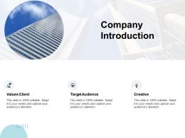 Company Introduction M99 Ppt Powerpoint Presentation File Background Images