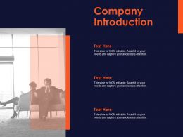 Company Introduction Ppt Powerpoint Presentation Professional Graphics Design