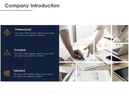 Company Introduction Ppt Powerpoint Presentation Styles Graphics Design