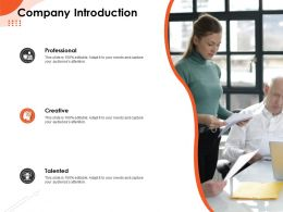 Company Introduction Professional M536 Ppt Powerpoint Presentation File Samples