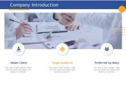 Company Introduction Target Audience Ppt Powerpoint Presentation Visual Aids Styles