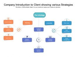 Company Introduction To Client Showing Various Strategies