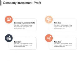 Company Investment Profit Ppt Powerpoint Presentation Pictures Graphics Design Cpb