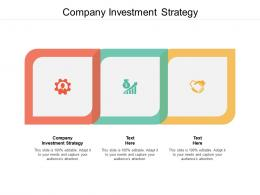 Company Investment Strategy Ppt Powerpoint Presentation Model Outline Cpb