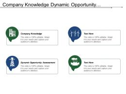 Company Knowledge Dynamic Opportunity Assessment Develop Strategy Measure Performance