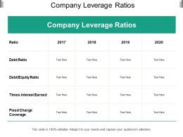 Company Leverage Ratios
