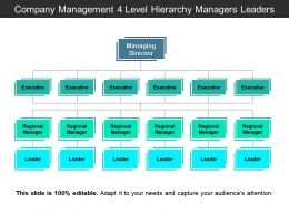 Company Management 4 Level Hierarchy Managers Leaders