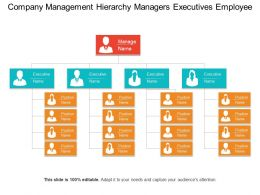 Company Management Hierarchy Managers Executives Employee