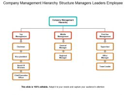 Company Management Hierarchy Structure Managers Leaders Employee